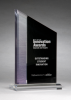 Digitally Printed Zenith Award Colored Acrylic Awards
