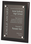 Black Piano Finish Plaque Acrylic Plaques