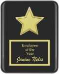 The Recognition Star Plaque Employee Awards