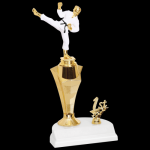 Rising Star Trophy -Martial Arts Figure with a Riser Trophies