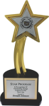 The Recognition Star with Custom Insert Metal Trophies