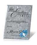 Silver Risk Taker Recognition Plaques