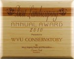 R2707 - Bamboo and Amber Bamboo Recognition Plaques