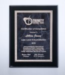 Black High Lustr Plaque with Gray Marble Plate Sales Awards