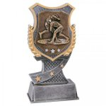 Shield Award -Wrestling Shield Resin Trophy Awards