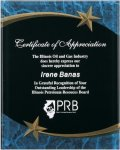 Blue Marble Shooting Star Acrylic Award Recognition Plaque Star Plaques