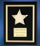Acrylic Plaque with Brass Star Star Plaques