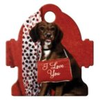 Fire Hydrant Pet Tag Street Tag Gifts